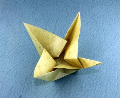 star_flower1